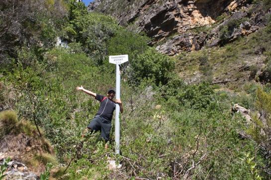 Dangerous Ascent
